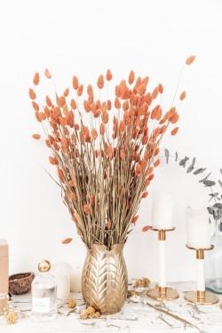 Bouquet de fleurs séchées Phalaris Orange 70 cm
