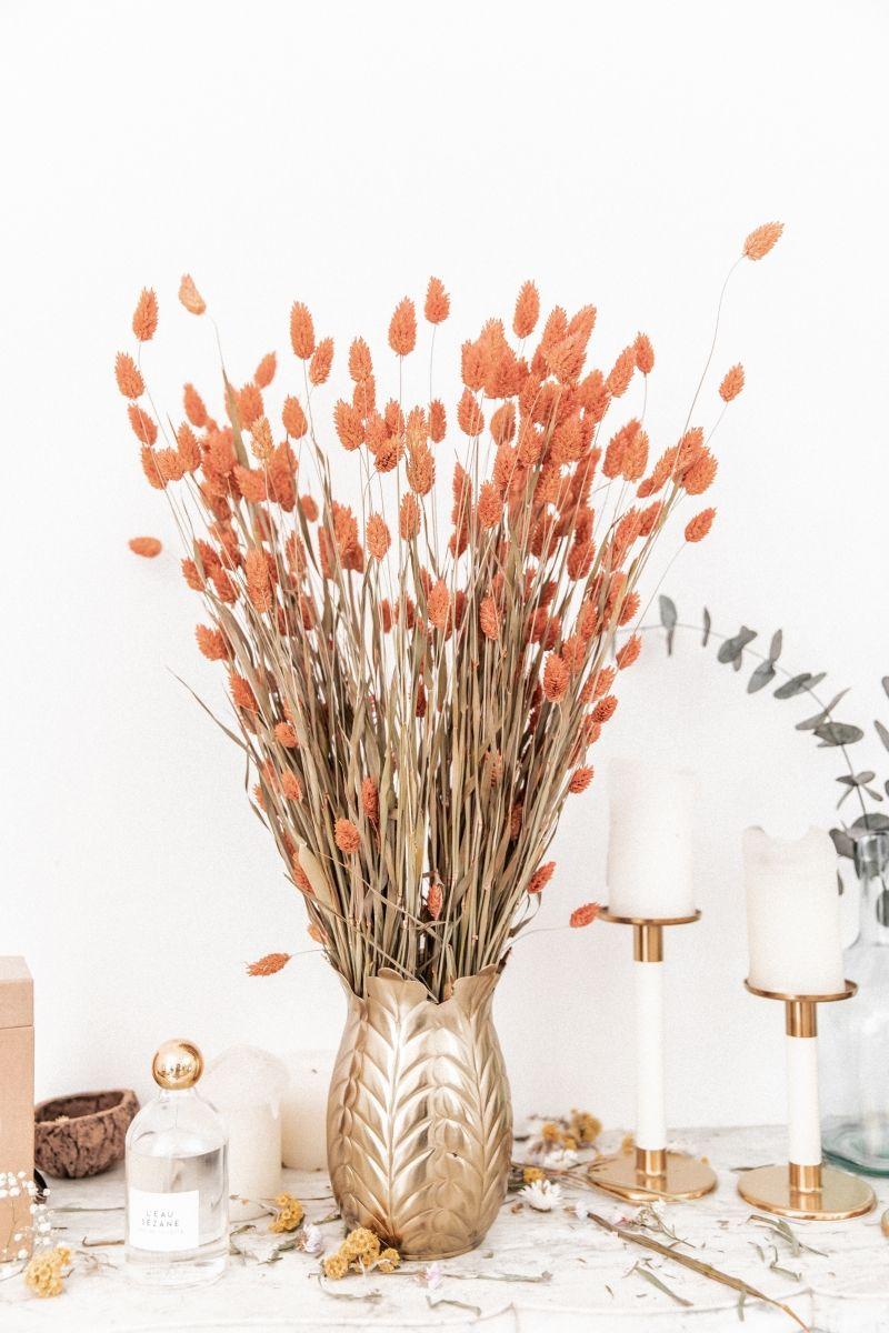 PHALARIS Orange - Bouquet de fleurs séchées