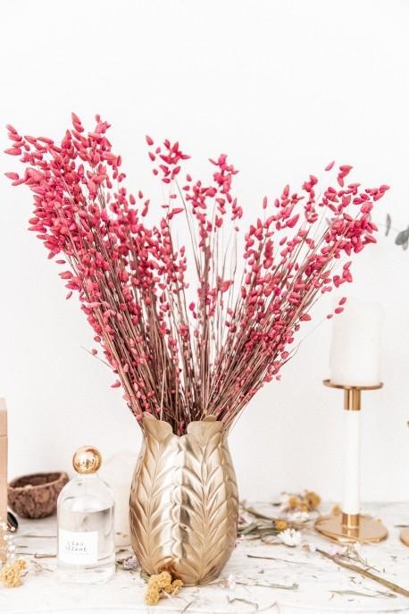 Bouquet de fleurs séchées Briza Maxima Rose 100 gr