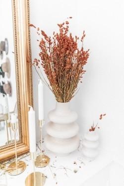 Bouquet de fleurs séchées Briza Maxima Orange 100 gr