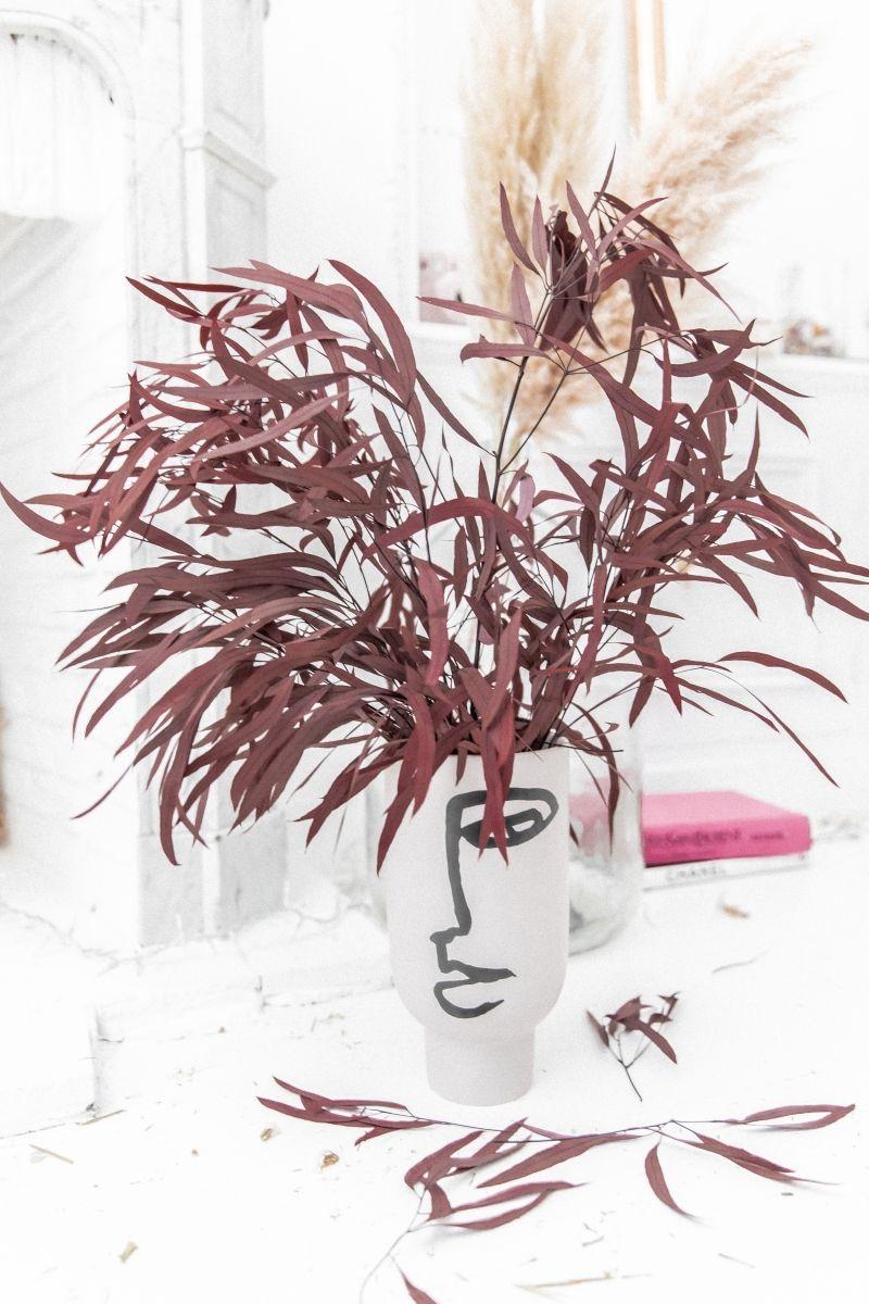 Eucalyptus NICOLY Rouge - Bouquet de fleurs séchées 75 cm