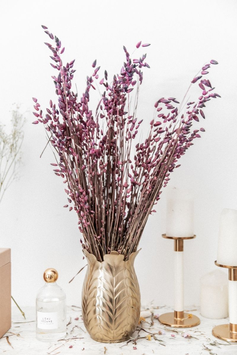 Bouquet de fleurs séchées Briza Maxima Violet 100 gr - 1