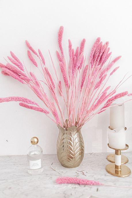 Bouquet de fleurs séchées Sétaire naturelle rose H70cm