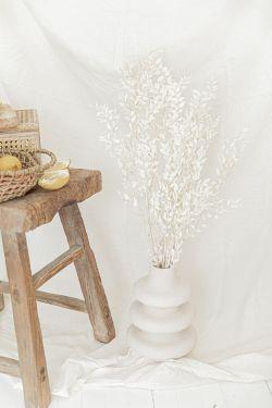 RUSCUS Blanchi - Bouquet de fleurs séchées H90cm