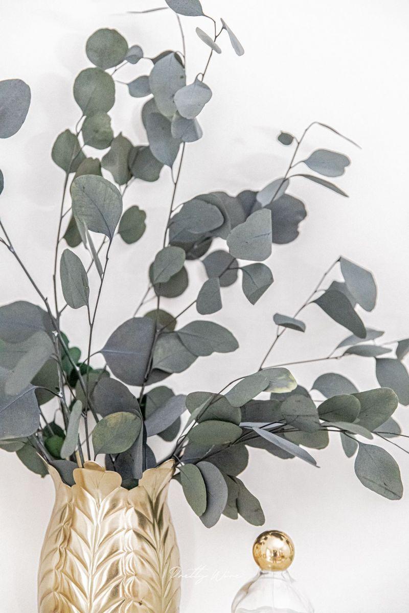 EUCALYPTUS POPULUS VERT - Bouquet de fleurs séchées
